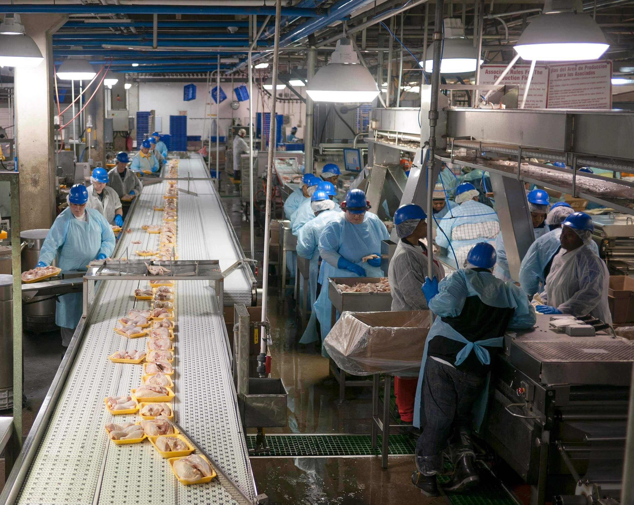 Perdue Farms Success Story Delaware Prosperity Partnership